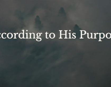 Romans VS: According to His Purpose
